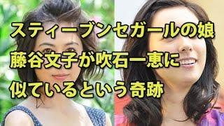 スティーブンセガールの娘、藤谷文子が意外にも吹石一恵に似ているとい...