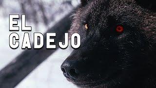 Historias De Terror - EL CADEJO - El DoQmentalista