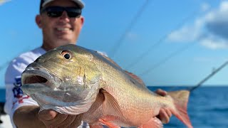 MONSTER Snapper {Catch Clean Cook} Whole Butterflied Snapper