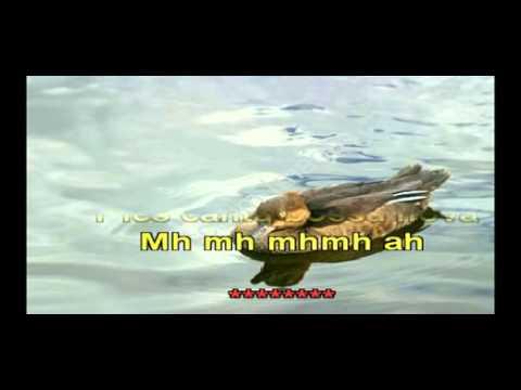 Karaoke (Con Voz) - Natalia Lafourcade - Un Pato