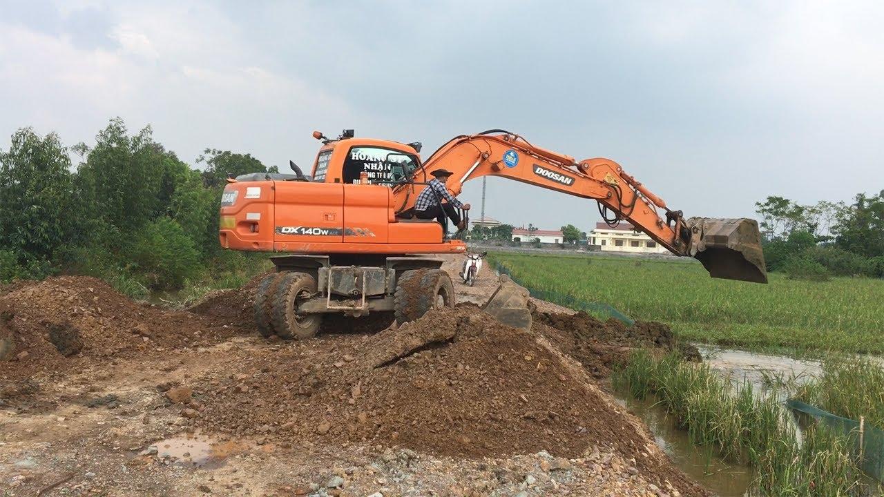Excavator Working In Ripe Rice Field