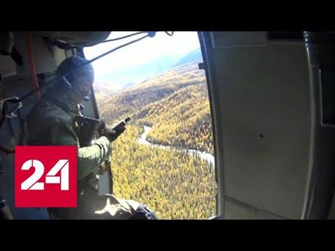 В иркутской тайге поймали главаря ОПГ - Россия 24