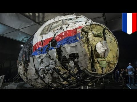 MH17 shot down by Buk missile: Dutch report says Russian-built missile downed flight - TomoNews