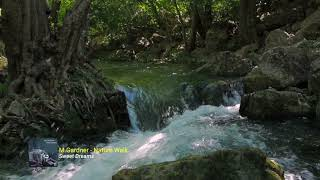 Nature Walk video