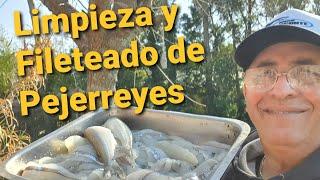 #Pejerrey #Laguna #Mar Chiquita Limpiando y Fileteando pescado