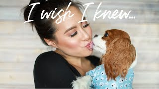 THINGS I WISH I KNEW | Before Getting a Cavalier King Charles