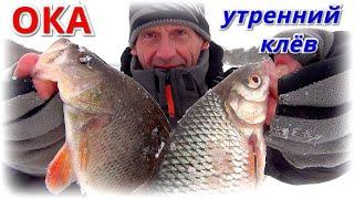 Попал на утренний клёв Рыбалка на ОКЕ 2021