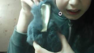 Обзор на мягкую игрушку кролика-брелка