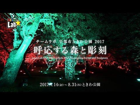 チームラボ 宇部市ときわ公園 2017 呼応する森と彫刻