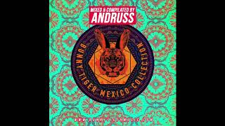 Download Video Bunny Tiger Mexico Collection - Mixed by Andruss MP3 3GP MP4