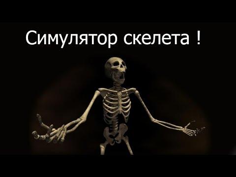 Симулятор скелета !
