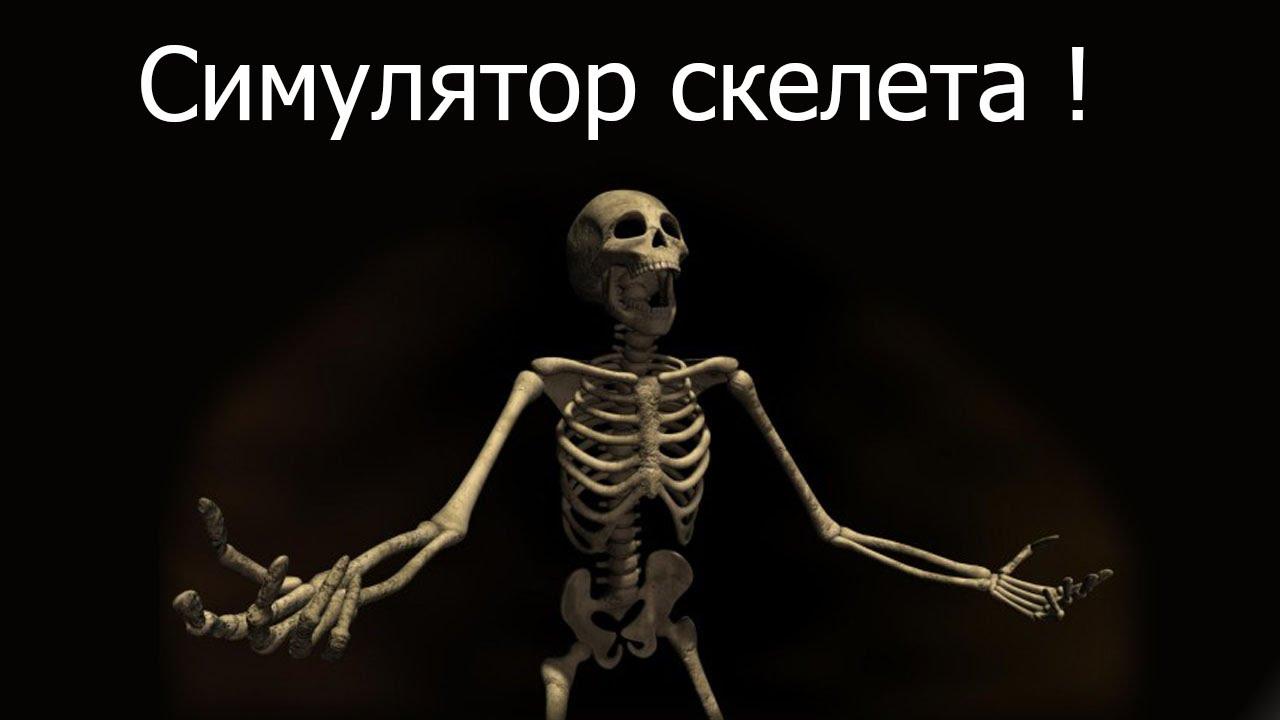 Скачать симулятор скелета через торрент