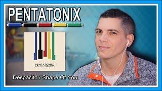 "Pentatonix Reaction   ""Despacito / Shape Of You""  First Listen"