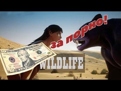 Порно MMO RPG за 10 баксов(Wild Life)