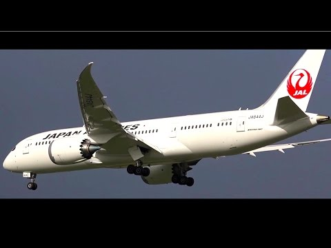 CHARTER ● Japan Airlines Boeing 787-8 Dreamliner - Landing & Takeoff at Melbourne Airport