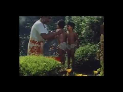 Paa Nilaavilae Pavizha - Butterflies - 1993