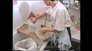 Домашний бизнес Выращиваем грибы дома(Готовый бизнес в Интернете. http://korsa51.blogspot.ru/p/blog-page_3.html Домашний бизнес Выращиваем грибы дома Готовый бизнес..., 2014-06-06T06:00:00.000Z)