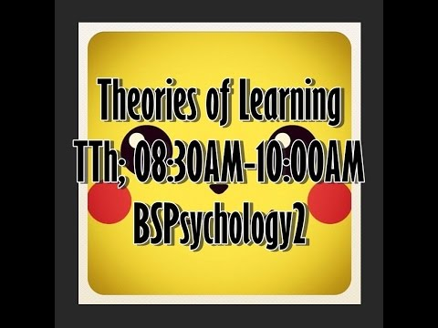 Theories of Learning San Jo (Actual Simulation)