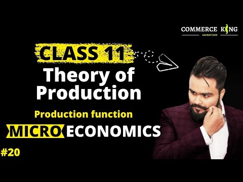 #20, Production function, types of products (Micro economics-Class 11 and 12)