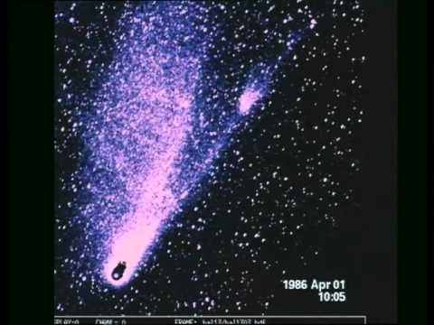 The Tails of Comet Halley