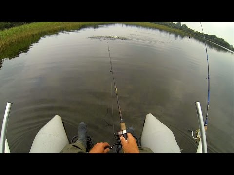 How To Catch Pike Wt Top-water Popper Fishing Lures. Рыбалка щука на поппер.
