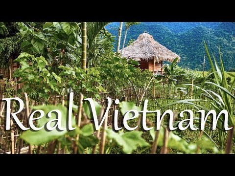 Real Vietnam  - The Pu Luong Nature Reserve