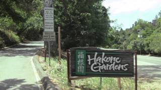 Hidden Gems of Santa Clara Valley - Hakone Gardens