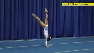 Level 2 Floor Exercise USAG