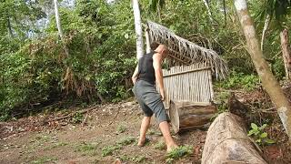 Deadlifting logs in the Amazonian jungle