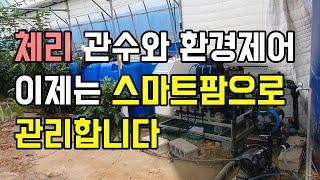 [체리재배] 스마트팜 도임, 관수, 양액재배, 유동펜,…