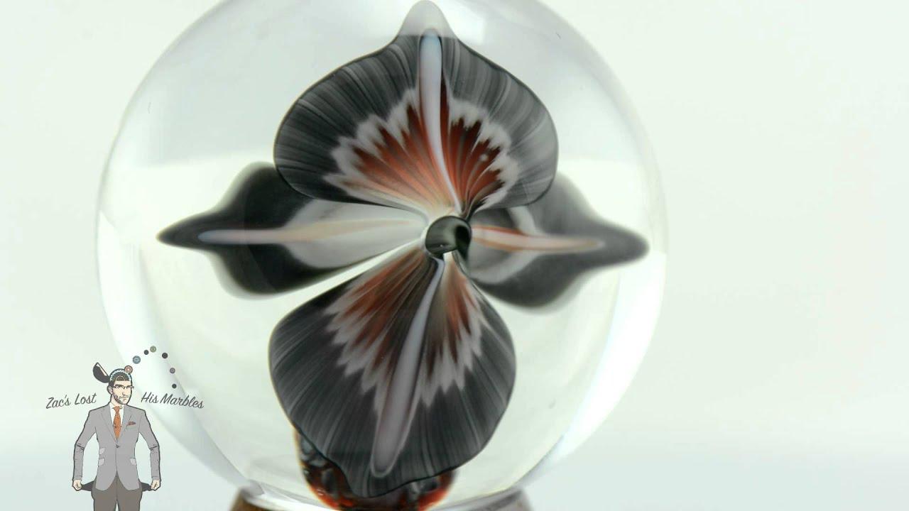 John Kobuki Red Grey Lady Slipper Orchid Marble Youtube