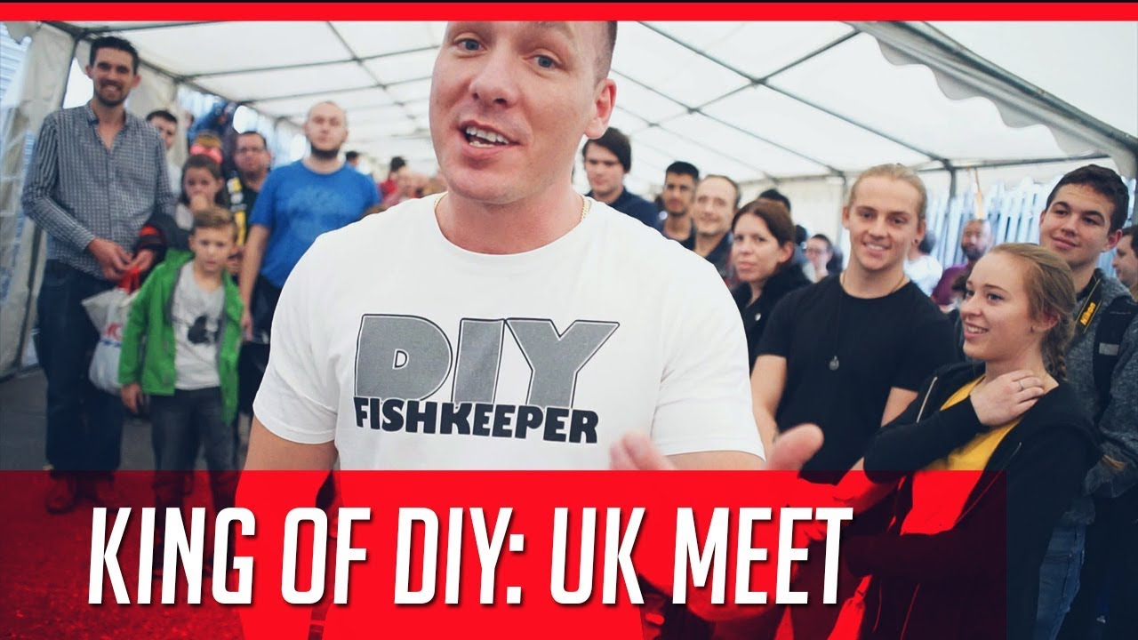 King Of Uk Youtube Diy Youtuber Meet Yfv7gyb6
