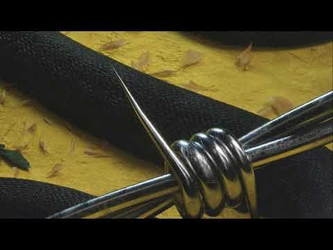 Post Malone – Rockstar (feat. 21 Savage)