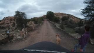 VR 360 Photo Journey: Peavine Trail - Prescott, AZ