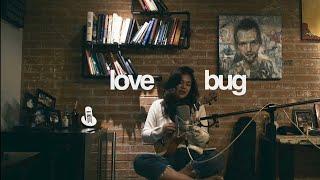 Lovebug  The Jonas Brothers (ukulele cover)  Reneé Dominique
