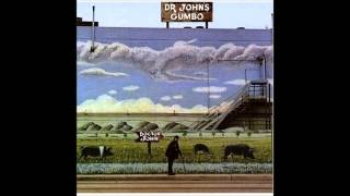 Watch Dr John Somebody Changed The Lock video