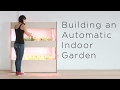 Setting Up an Automatic Indoor Garden |