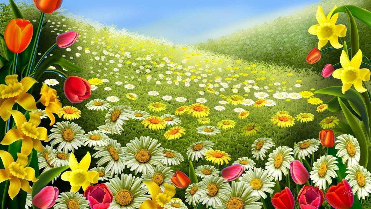 Beautiful Flower Wallpaper Youtube