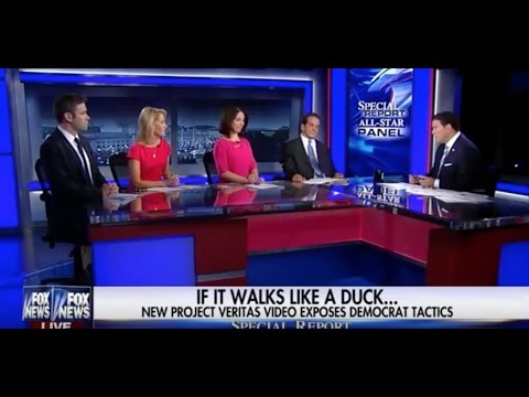 Bret Baier Discusses Project Veritas Action Videos With Fox News Panel