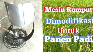 Download lagu Mesin rumput biasa dimodifikasi untuk mesin pemotong padi