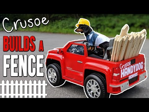 Ep #3: Crusoe the 'Handydog' Build a Fence! - (Cute Dachshund Video!)