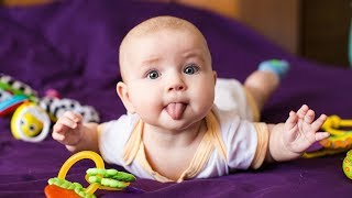 HILARIOUS ADORABLE BABIES  Funny Baby Videos (2018)