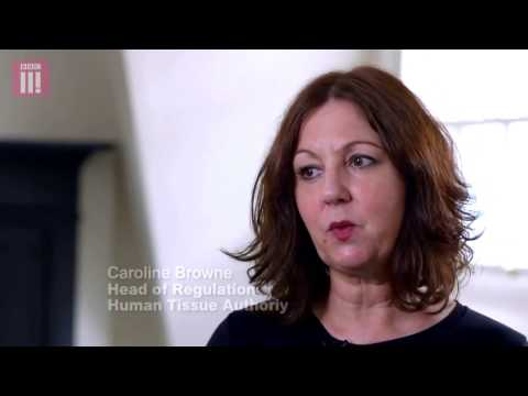 About the Human Tissue Authority