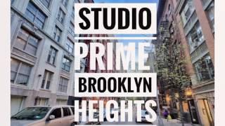 Video Tour  Studio Apartment in Brooklyn Heights near Bridge NYC Brooklyn  Rental Across Manhattan