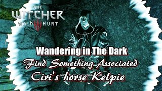 The Witcher 3 Wild Hunt Find Something Associated witch Ciri's horse Kelpie