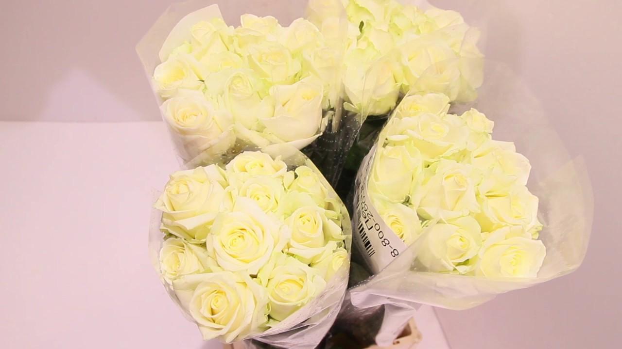 Купить свежие цветы любимым от компании dariroza. Доставка цветов по челябинску выполняется за 1 час!. Заходите на сайт и выбирайте!