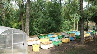 Изготовление ульев из пенополиуретана в домашних условиях(Пчелопакеты Карника www.pchelovod-yug.ru., 2014-10-09T11:24:05.000Z)