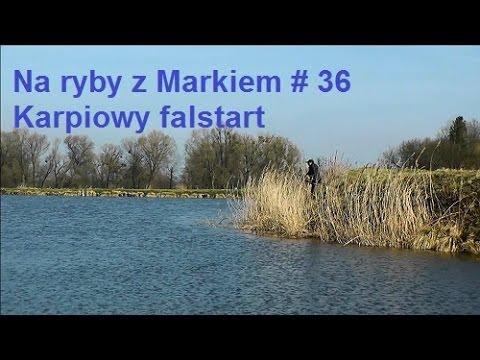 Na ryby z Markiem # 36 - Karpiowy falstart - Wędkarstwo