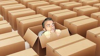 QUI SE CACHE DANS UNE BOÎTE ? (What The Box)