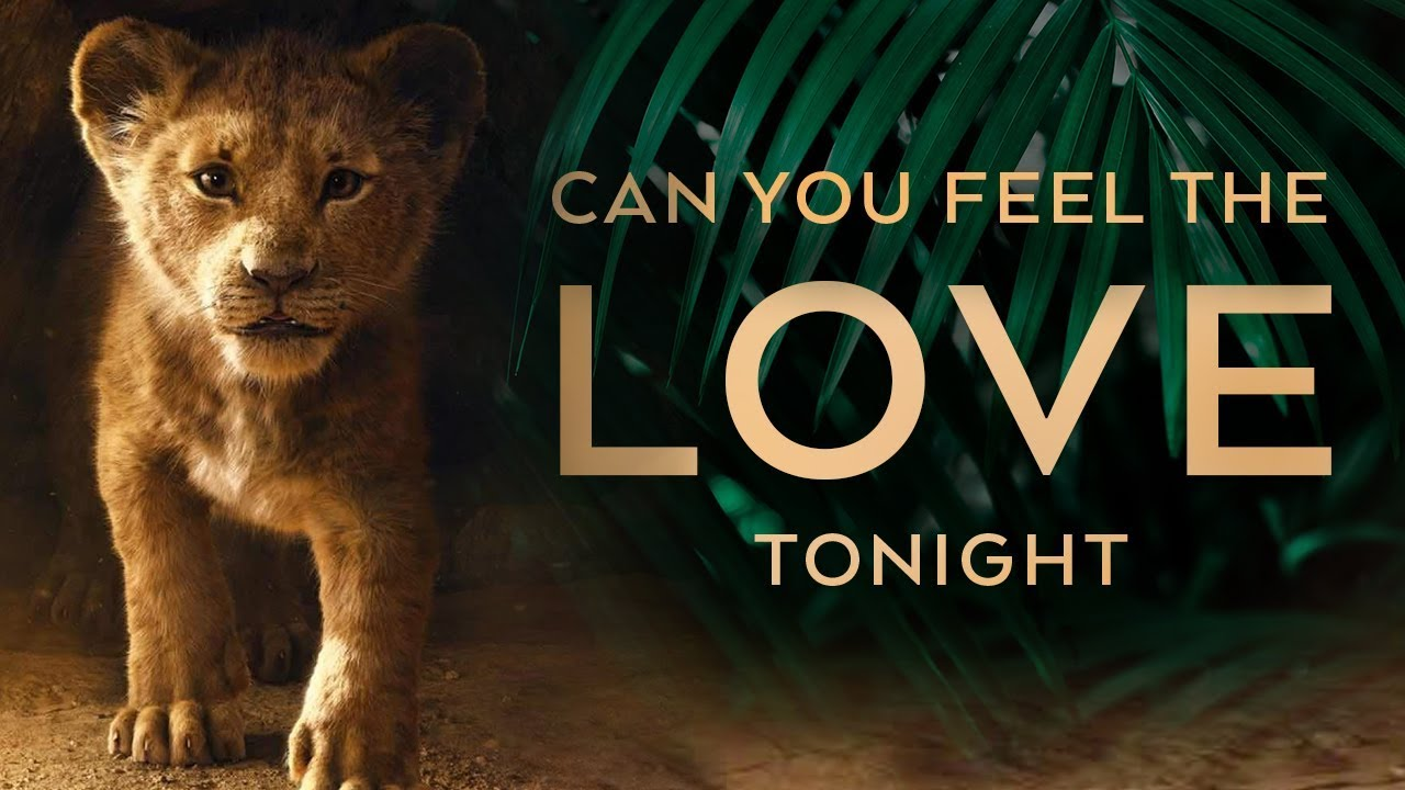 Film Music Site The Lion King Can You Feel The Love